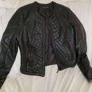 Therapy quilted moto  jacket